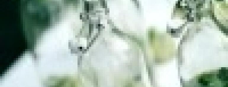 157453-image5.jpg